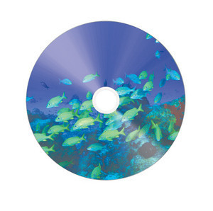 43653 CD-R Silver Global Disc Surface printed