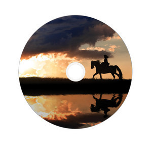 43667 DVD+R DL Global Disc Surface Printed