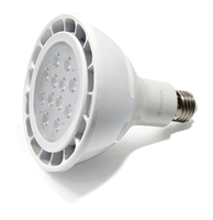 Лампа Verbatim LED PAR38