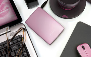 HardDrives Portable USB2Colours 320GB Pink