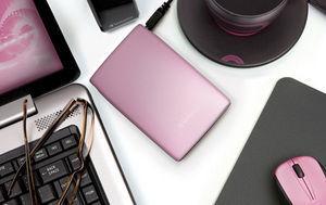 HardDrives Portable USB2Colours 320GB Pink