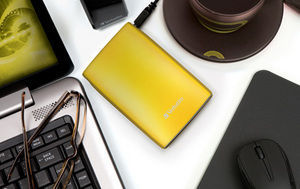 HardDrives Portable USB2Colours 500GB Yellow