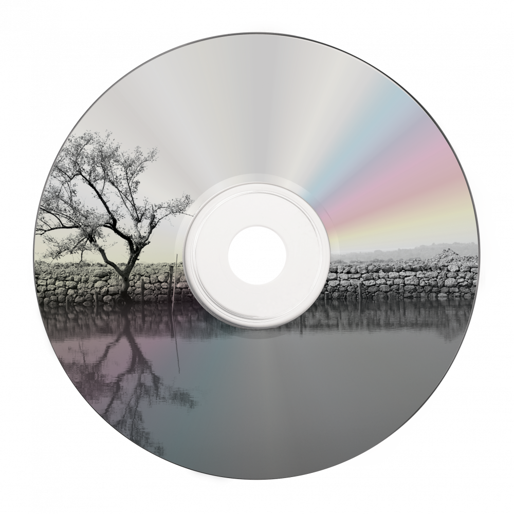 43647 DVD-R Shiny Silver Printable Global Disc Surface printed